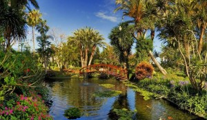 hotel-botanico-the-oriental-spa-garden-1