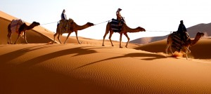 cameltrekking-in-marocco