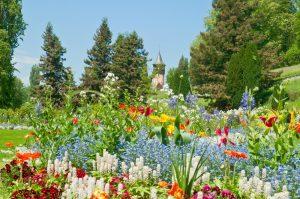 isola, mainau, fiori, primavera, estate, turisti, passeggiata, flora, fauna,
