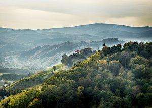 sloevnia, vigneti, colline, boschi