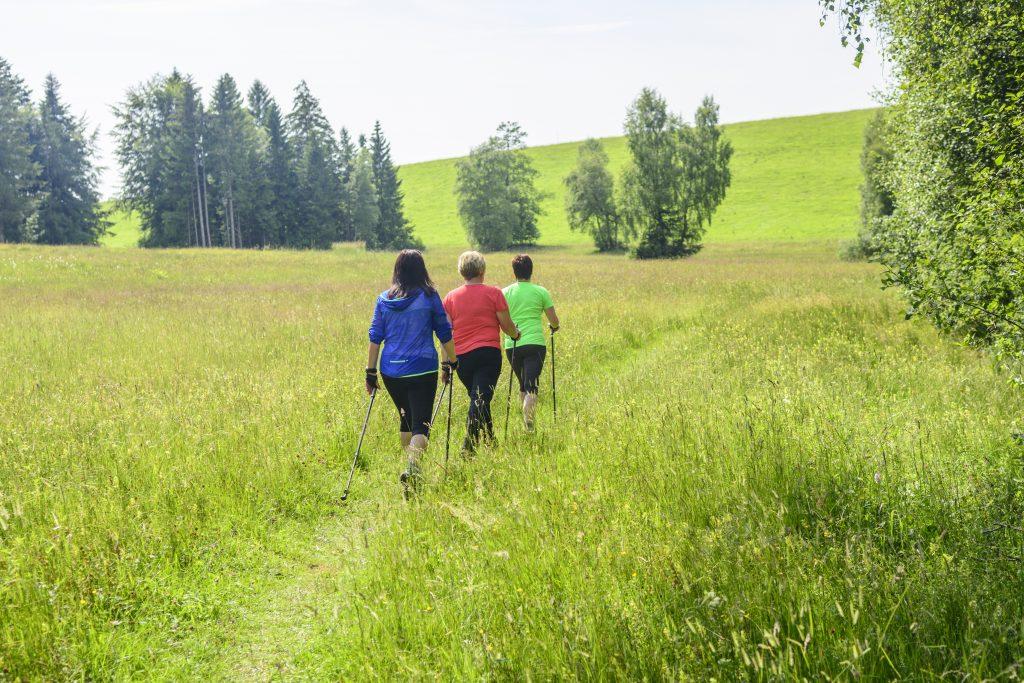 Tre donne fanno nordic walking nella natura